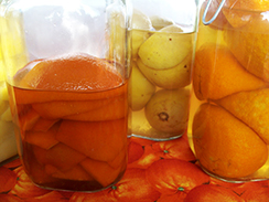 Frutti_bittersinaasappels-2