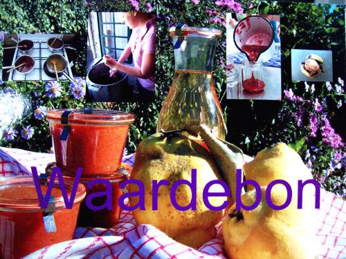 waardebon-frutti_confetti